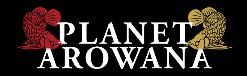 Planet Arowana